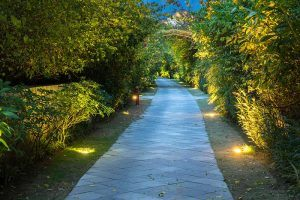 Long garden path at dusk lit by path lighting